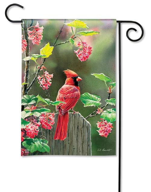 """Cardinal Beauty Summer Garden Flag - 12.5"""" x 18"""" - BreezeArt"""