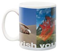 http://store-svx5q.mybigcommerce.com/product_images/web/840391107960.jpg