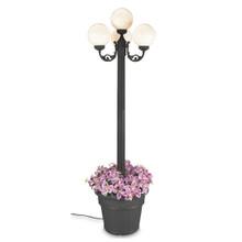 European Four Globe Park Style Planter Lamp - White Globes with Black Finish