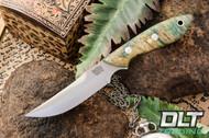 Adventurer Persian CPM-154 Green & Gold Elder Burl