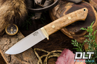 Classic Drop Point Hunter A2 - Brass Hardware - Natural Maple Burl - #2