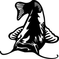 Catfish Decals FSN1-245 Vinyl Fishing Window Stickers