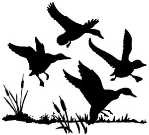 Ducks In Cattail Decal Md Wildlife Waterfowl Decal