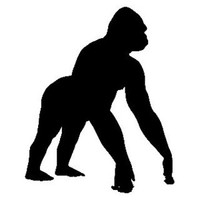 Gorilla Decal STSBA #1 Vinyl Wildlife Window Stickers