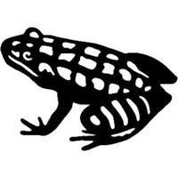 Frog Decals /Stickers for Boats, Trucks, Windows and more.