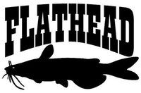 Flathead Catfish Decal MD Wildlife Outdoors Fishing