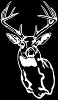 Deer Decal MD #6  Wildlife Outdoors Hunting Stickers