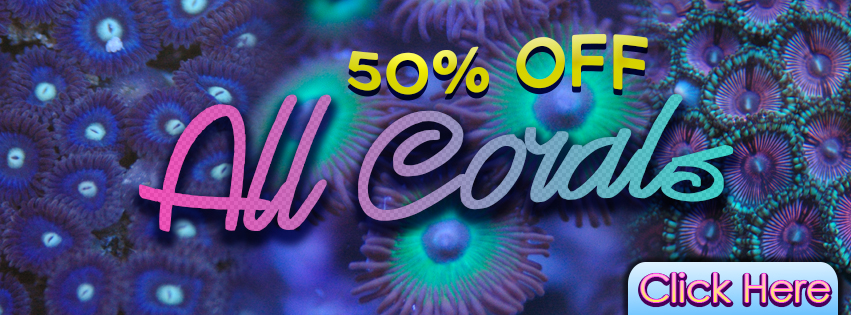 facebook-corals-50-off-fb-1.jpg