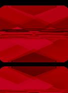 Swarovski Bead 5055 MM 10,0X 8,0 SIAM(72pcs)