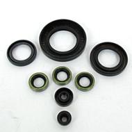 Engine Oil Seal Kit / Z1 KZ