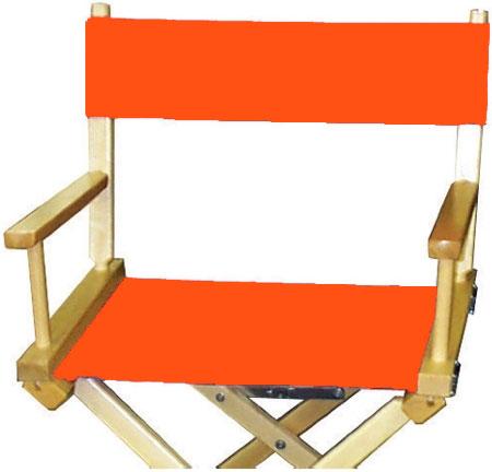 Orange   PMS 1655 Orange