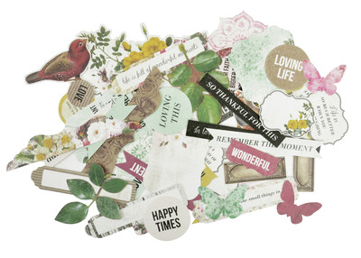 Kaisercraft  Collectables, Die cut shapes, Be-YOU-tiful,  over 50 pcs, Scrapify, Australia