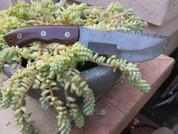 "DKC-400 DS SIERRA TRACKER Damascus Hunting Knife Brown Burlwood Style Micarta 12"" Long, 6"" Blade 13ozl Damascus Steel Blade DKC Knives TM"
