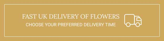 UK Fast Delivery