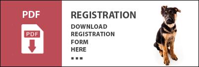 Download PDF Form