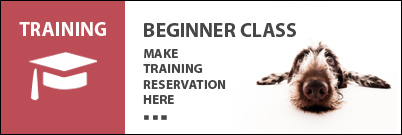 Beginner Training Class