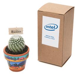 intel-cactusmagnet.jpg