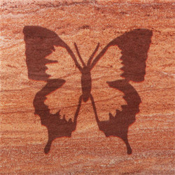 Butterfly Coasters - Set of 4