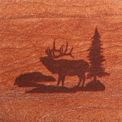 Elk in Woods Coasters - Set of 4