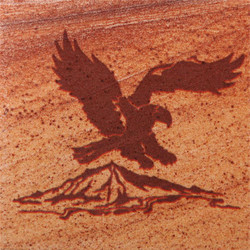 Eagle #2 Coasters - Set of 4