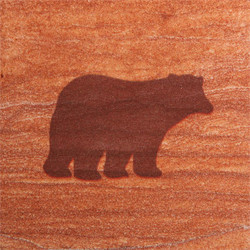 Bear #1 Coasters - Set of 4