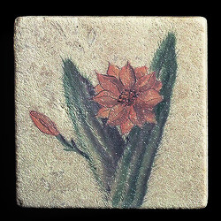 """Rustic Cactus #4 4""""x4"""" Deco Tile"""