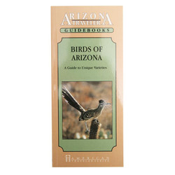 Guidebook - Birds of Arizona