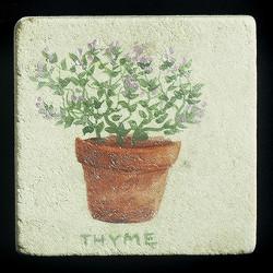 "Thyme 4""x4"" Deco Tile"