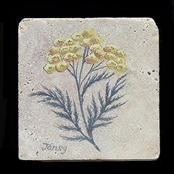 "Tansy Herb 4""x4"" Deco Tile"