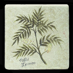 "Wild Licorice 6""x6"" Deco Tile"