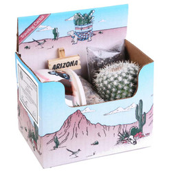 Cactus Travel Kit - 3 inch