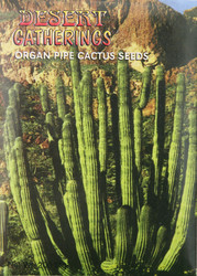 Organ Pipe Cactus Seeds