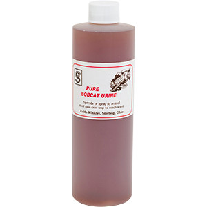 Bobcat - Top Quality Pure Animal Urine