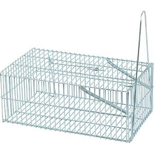 Spring Cage Chipmunk Trap