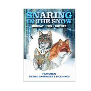 Barringer, Bernie - Snaring In The Snow, Bobcat, Fox, Coyote DVD