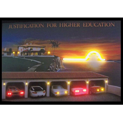 """Justification for Higher Education"" neon LED illuminated ironic artwork"