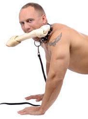 Bad Dog Leash and Spiked Collar Kit