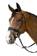 Newmarket's Oxford Performance Bridle
