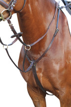 Kincade Event/Stock Breastplate