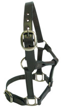 Foal Leather Headstall