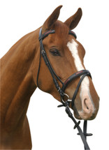 McAlister Hanoverian Contrast Bridle