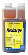 Recharge Oral Rehydration Concentrate For Horses