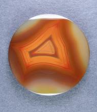 Top shelf Orange Condor Agate Designer Cabochon-   #14730