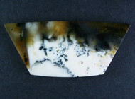 Gorgeous Old Stock Spanish Point Dendritic Agate Cabochon #15490