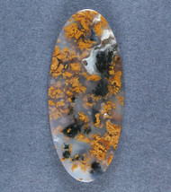 Fantastic Black and Gold Texas Moss Agate Cabochon  #17115