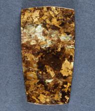 Gorgeous Bronzite Cabochon- Chatoyant Reddish Gold  #17175