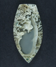 Gorgeous Horse Canyon Moss Agate -     #17230