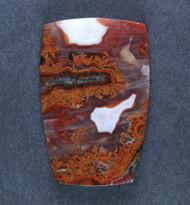 Gorgeous Moroccan Agate Plume Designer Cabochon  #17232