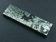 Gorgeous Dendritic Native Silver Ore Collectors Cabochon  #17347