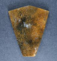 Gorgeous Designer Cabochon of Nipomo Sagenite Agate  #17362
